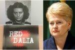 В Европарламенте – атака против Грибаускайте: выясняют, кто оплатил