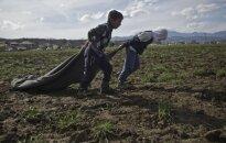 Беженцам в Литве предлагают выделить дополнительную компенсацию