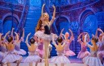 В Вильнюсе - детский балет Спящая красавица