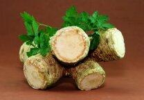 Krienai – nuo seniausių laikų visame pasaulyje paplitusi daržovė