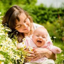5 vaistiniai augalai, kurie labiausiai tinka mums, lietuviams
