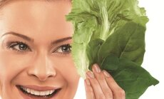 Mergina, laikanti salotų lapus