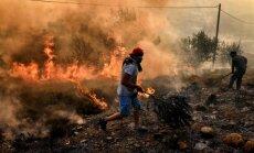 Греция просит ЕС о помощи в борьбе с лесными пожарами
