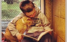 Vaikai skaito knygas katėms: kokia iš to nauda? FOTO
