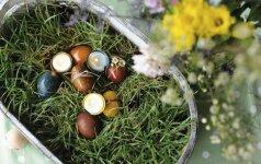 Nė lašo chemijos: 6 natūralūs kiaušinių marginimo būdai FOTO