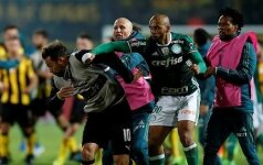 После матча Кубка Либертадорес началась массовая драка