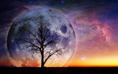 Savaitės horoskopas: netrūks išbandymų, bet tai jums patiks