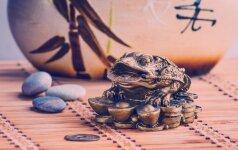 FENGŠUI PASLAPTYS: kaip pritraukti pinigus ir sėkmę