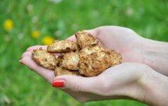 Sveiki sausainiai, kuriems iškepti reikia vos 3 produktų