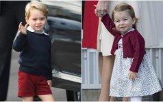 Mažieji princas ir princesė užklupti žaidimų aikštelėje: mano vaikas nuo jų užsikrėtė sloga
