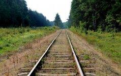 Трагедия в Гируляй: под поездом погибла девушка