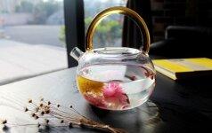 6 мифов о воде, в которые пора перестать верить