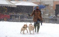 Sniegas Italijoje