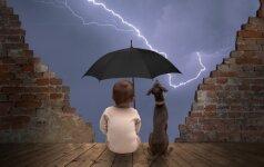 Kaip elgtis protingiausia, kai apima žaibo ir perkūnijos baimė