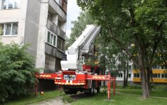 Пожарные-спасатели сняли с дерева мальчика в гипсе