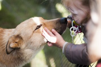 Šunų terapija vaikams: kokios veislės labiausiai tam tinka