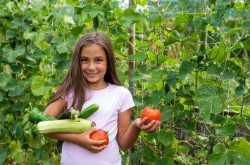 Kad vaikai pamėgtų daržoves ir vaisius, tėvai turi žinoti kelias taisykles