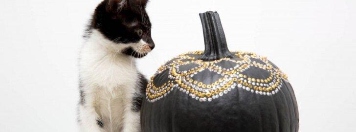 17 moliūgų dekoravimo būdų Helovinui