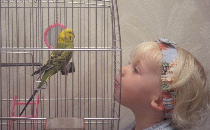 Tiesa ir mitai apie vaiko kalbą: kuo tikėti, o ką praleisti pro ausis