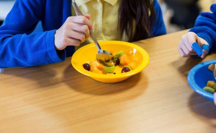"""""""Slapti pirkėjai"""" ragaus ne tik ligoniams, bet ir darželinukams bei mokiniams tiekiamo maisto"""