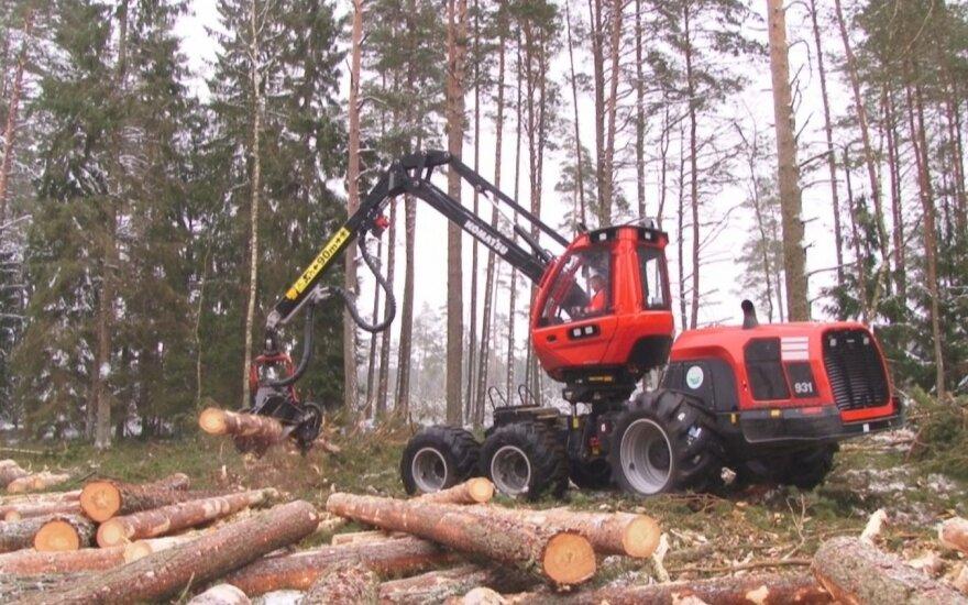 Правительство Литвы утвердило реорганизацию лесничеств