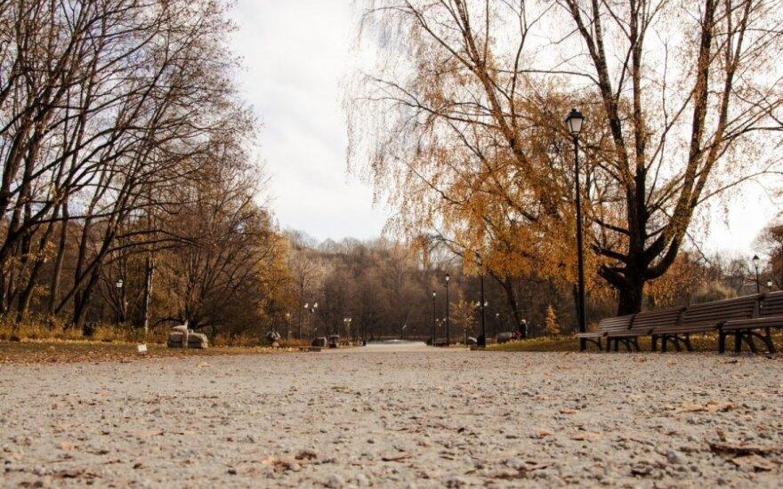 Погода в Литве напомнит об ушедшей осени
