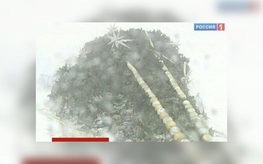 Омск: пятиметровая новогодняя елка упала на прохожего