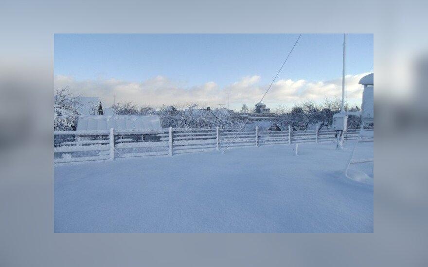 Sniegas Telšiuose