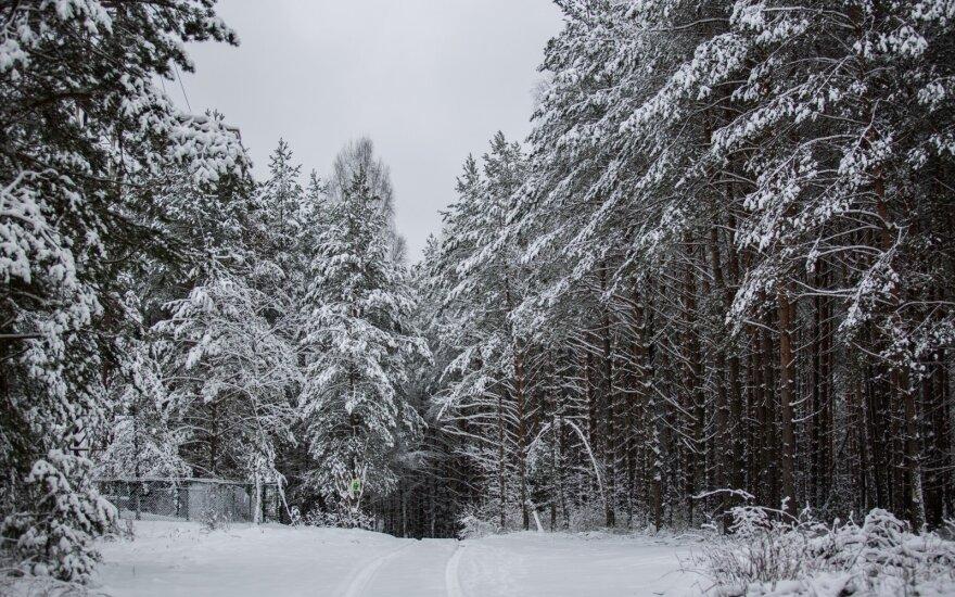Такой холодной погоды на Рождество в Литве не было уже давно