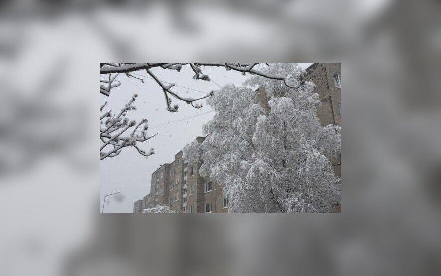 Žiemiški orai grįžo į Lietuvą