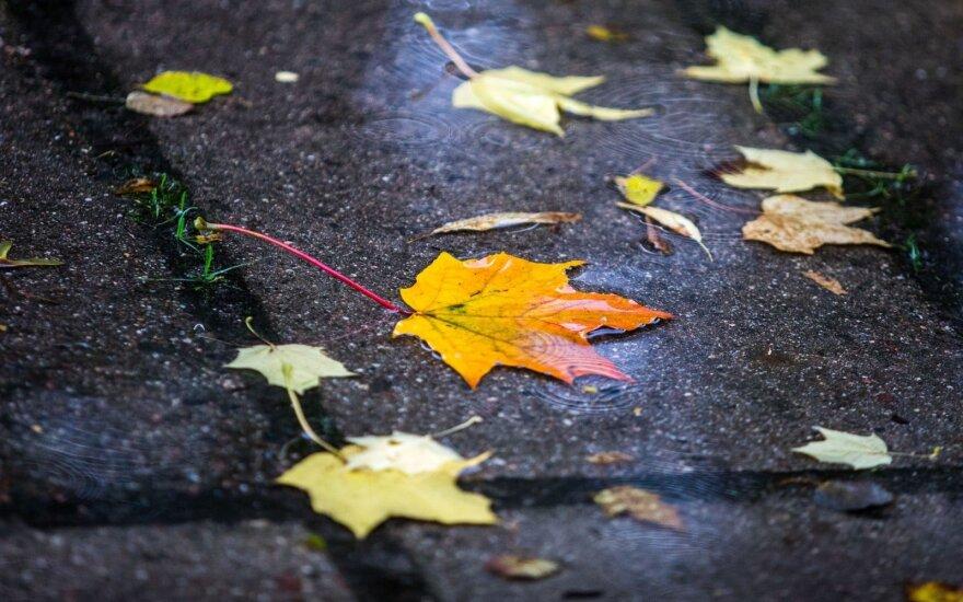 Погода: в Литву идут осенние дожди