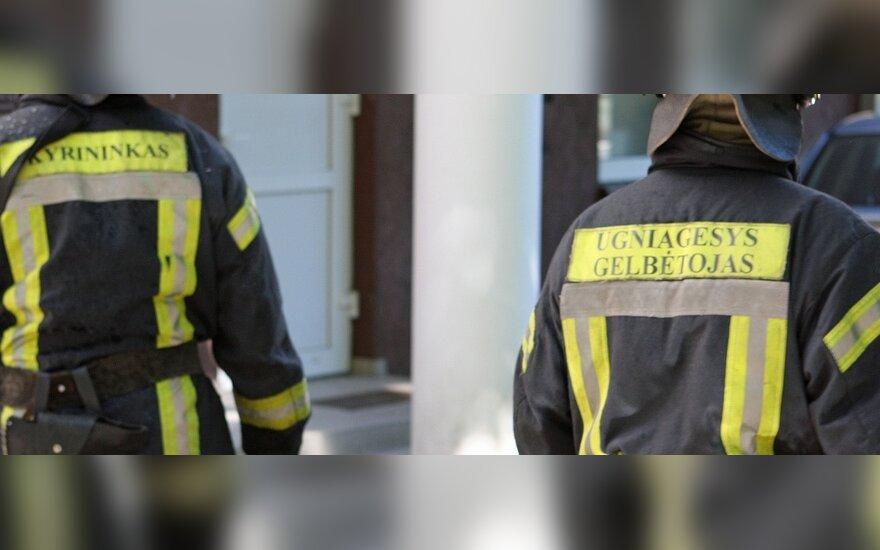 Самые надежные – пожарные-спасатели, самые ненадежные – члены Сейма