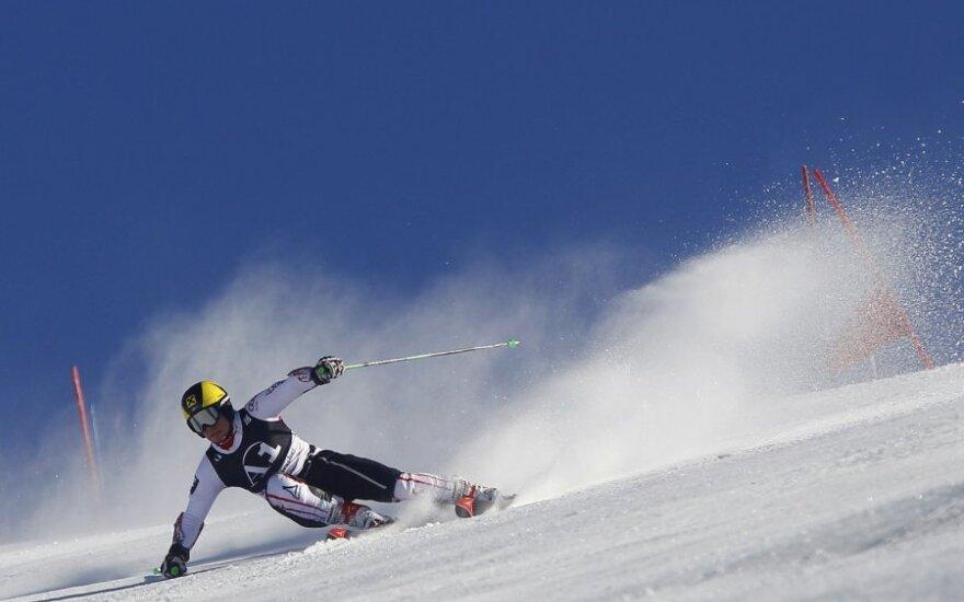 Шведские олимпийцы не получат премий за медали в Сочи