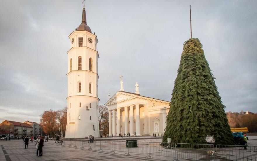 В Вильнюсе уже возводят рождественскую елку