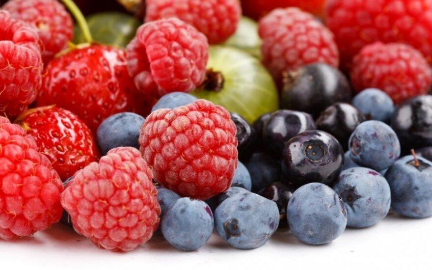 Способы хранения ягод и грибов