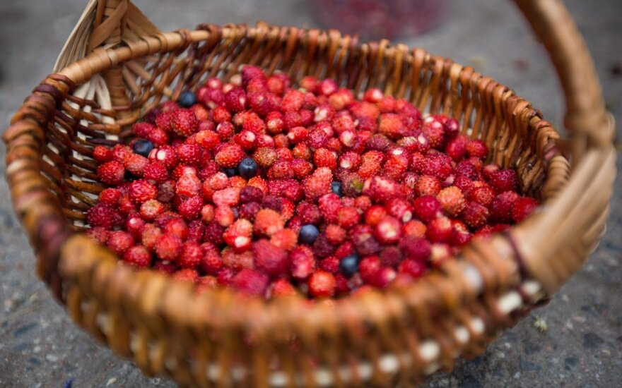 Сезон ягод: какие цены в этом году