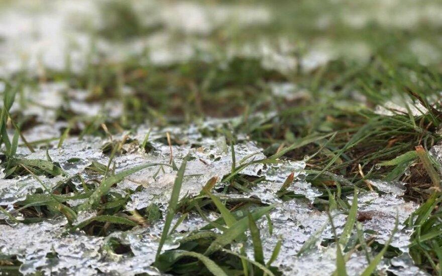 Синоптики: настоящей зимы еще придется подождать