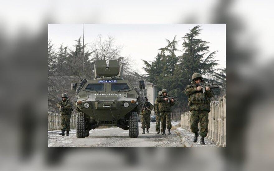 Литовские эксперты проверят вооружение Грузии