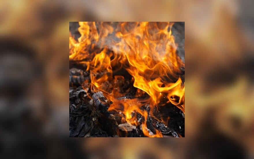 В Рокишском районе при пожаре погибла хозяйка дома
