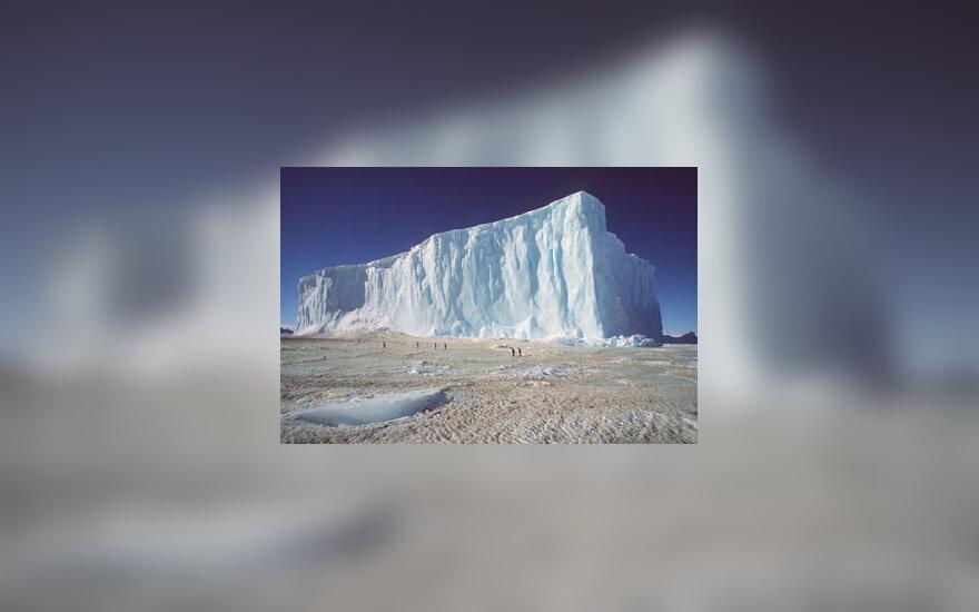 Ledynas, Antarktida