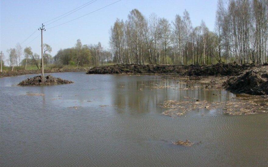 Vidury tvenkinio palikta salelė su aukštos įtampos elektros stulpu/ A.Balevičiaus nuotr.
