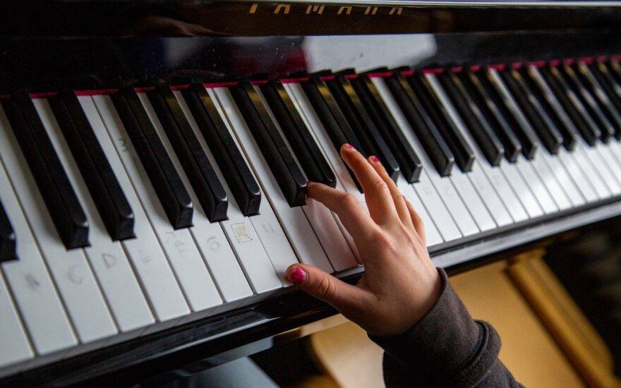 Muzikos pamoka