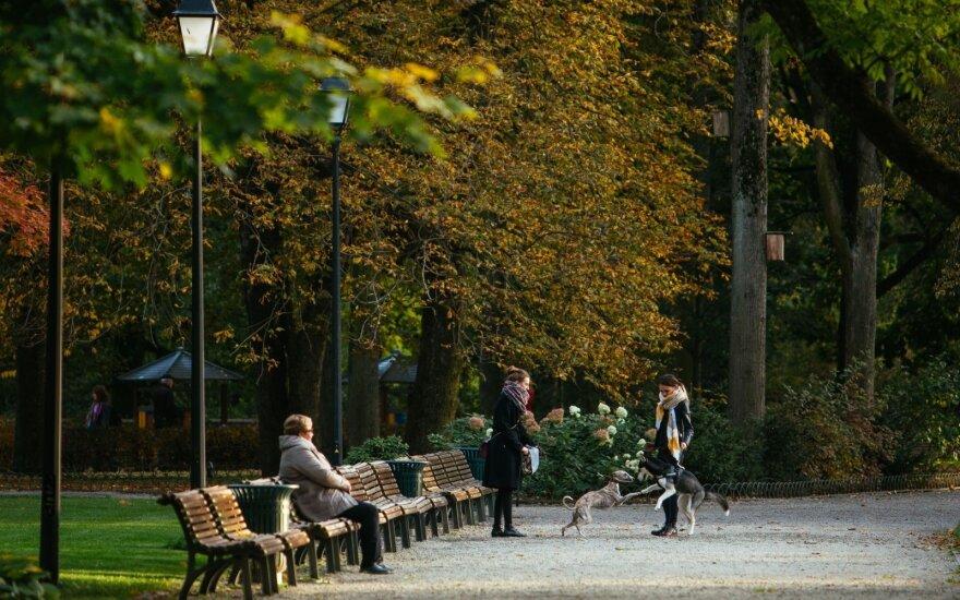 Погода: последний теплый и солнечный день октября