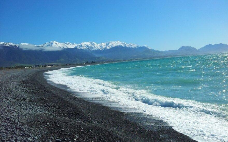 Vandenynas, Naujosios Zelandijos pakrantė