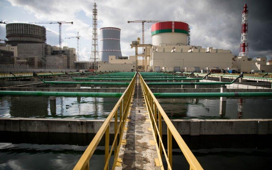 Литва просит Еврокомиссию подключиться к надзору за проектом БелАЭС