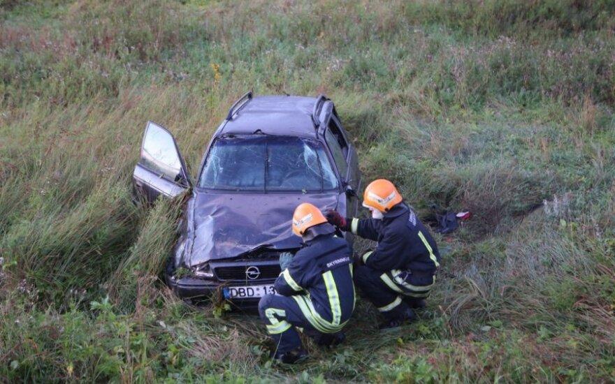 Водитель разбитого автомобиля: я не хотел сбить кота