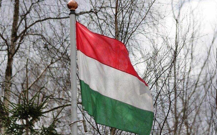 Консул Венгрии в украинском городе Берегово объявлен персоной нон-грата