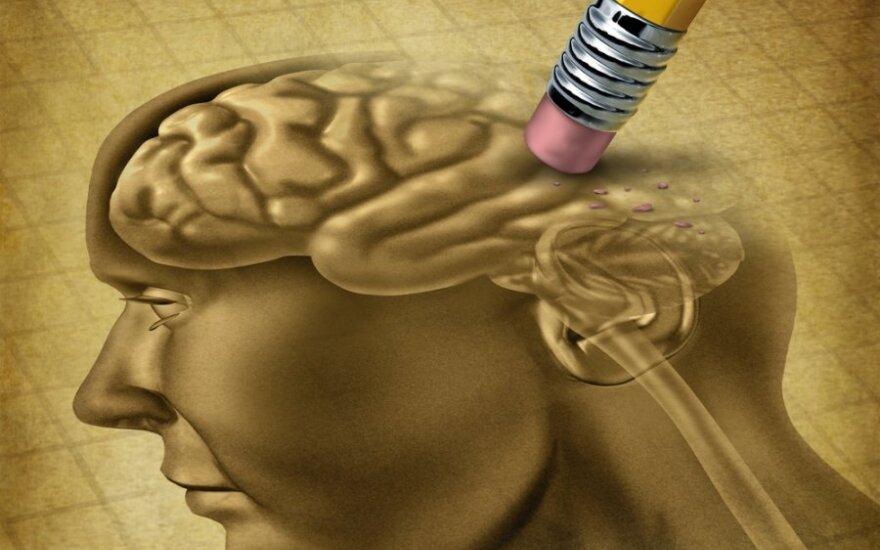 США выделили $100 млн. на карту человеческого мозга