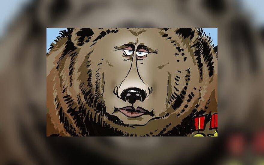 Пресса Британии: как Западу бороться с русским медведем