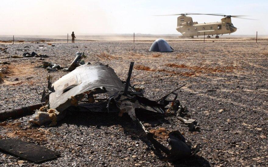 СМИ: установлены личности участников теракта российского лайнера А321